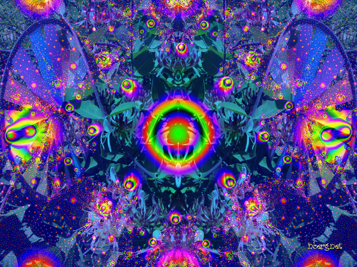 Cosmic psychedelic plant world - photos nberg.net - psychedelic fractal art